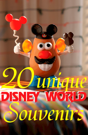 20 unique Disney World souvenir ideas from WDWPrepSchool.com