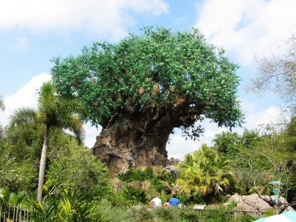 11 Secrets of Animal Kingdom from @WDWPrepSchool