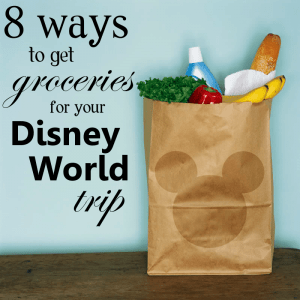 8 ways to get groceries for your Disney World trip from WDWPrepSchool.com