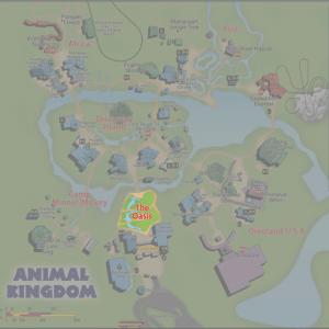 A guide to all Animal Kingdom attractions from WDWPrepSchool.com
