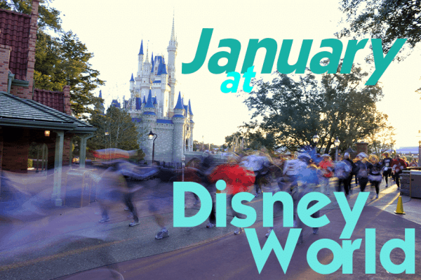New feature: monthly trip planning dashboards from @WDWPrepSchool