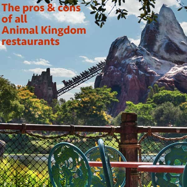 Pros and cons of all Table Service and Quick Service restaurants at Animal Kingdom   Dining at Animal Kingdom