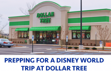 Prepping for a Disney World Trip at Dollar Tree | WDWPrepSchool
