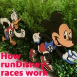 howrundisneyraceswork