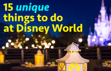 15unique 390x250 - 15 unique things to do at Disney World (and some are even free)
