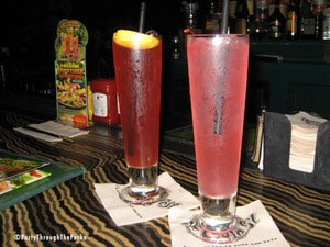 firefly - Drinking your way through Disney World