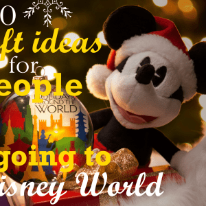 For Most Families That Are Planning Trips To Disney World Its A Big Deal
