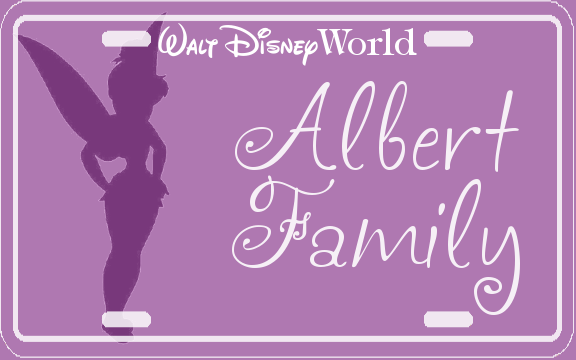 Disney World stroller tags