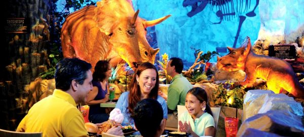 trexcafe 600x271 - The best 8-day Disney World itinerary for families