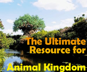 headerAKguide 300x250 - A guide to all Animal Kingdom rides and attractions