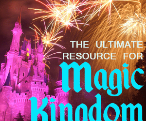 headermkguide2 300x250 - Complete guide to Magic Kingdom rides and attractions