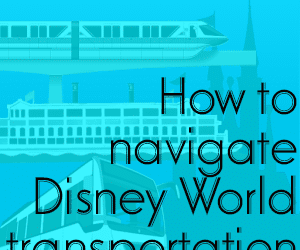 headertransportation 300x250 - How to navigate with Disney World transportation - PREP007