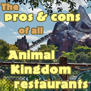 The pros and cons of all Animal Kingdom restaurants