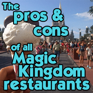 headerprosconsmk - Complete guide to Magic Kingdom rides and attractions