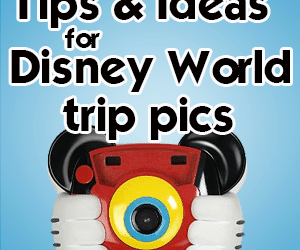 headerphotographytips 300x250 - Photography ideas and tips for your Disney World trip