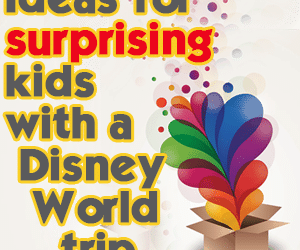 headersurpriseideas 300x250 - Ideas for surprising kids with a Disney World trip - PREP020