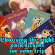 parkticketsquareimage 115x115 - How to choose the right park tickets - PREP051