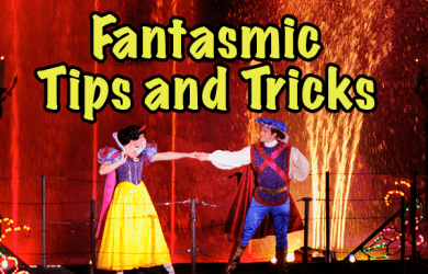 fantasmicsquareimage 390x250 - Tips and tricks for Fantasmic