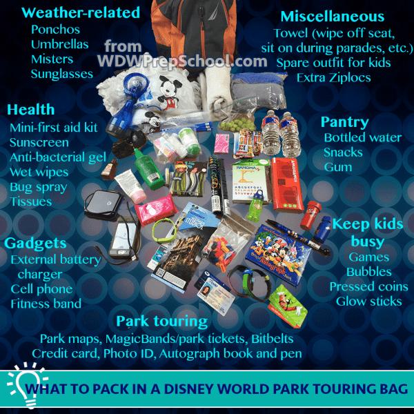 Disney World park bag