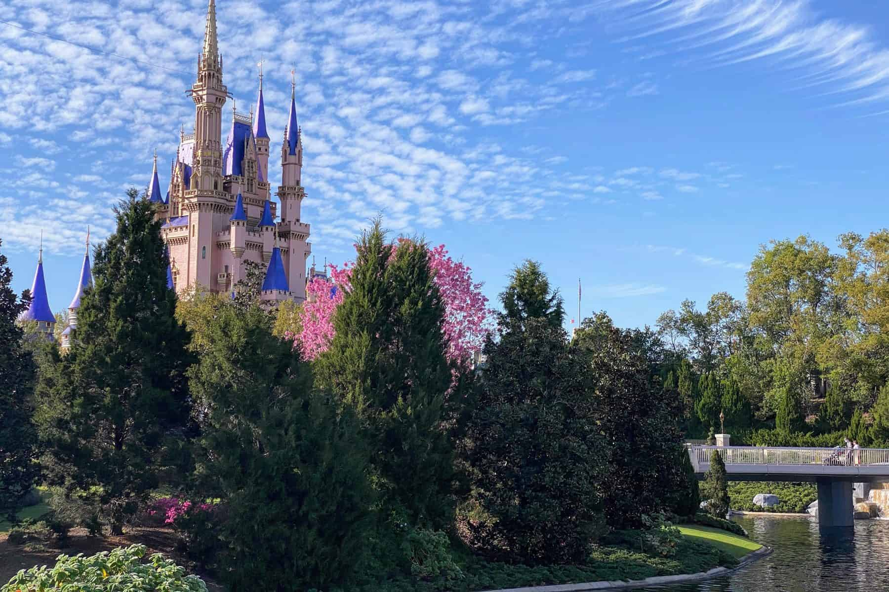 Magic Kingdom park hours