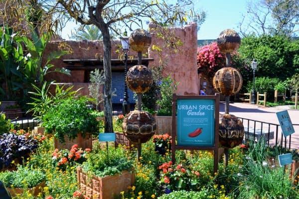 Urban Spice Garden