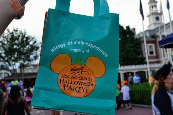 Allergy Friendly treat bag