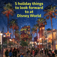 Holiday things at Disney World
