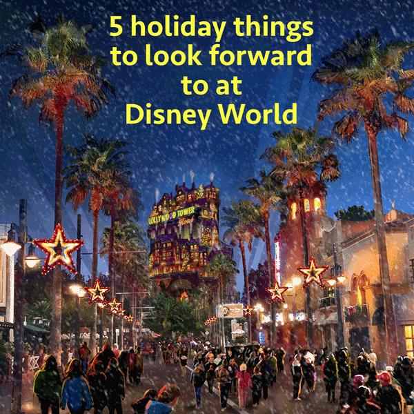 Holiday things at Disney World