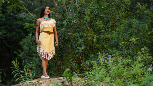 Pocahontas (character meet)