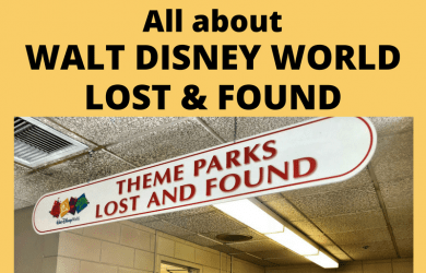 All about Disney World Lost and Found