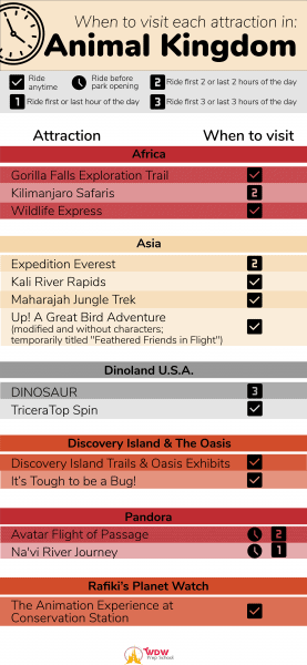 Animal Kingdom when to visit attractions