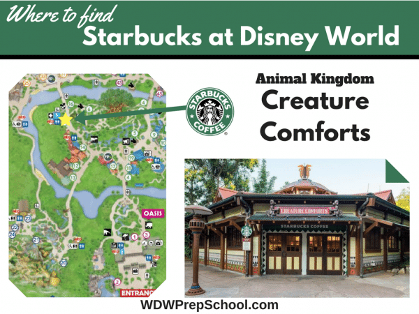 Copy of Epcot Starbucks 600x450 - Starbucks at Disney World - here's everything you need to know