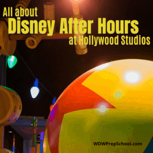 Disney After Hours at Hollywood Studios
