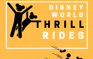 Disney World Thrill Rides (1)