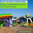 Early Morning Magic Toy Story Land SQ