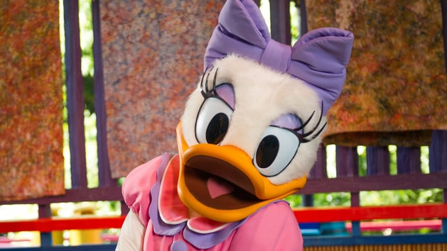 Daisy Duck (character meet)