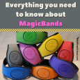 Everything you need to know about MagicBands