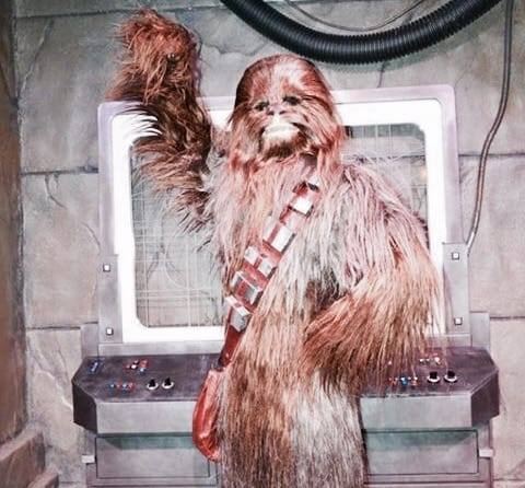 Chewbacca (character meet) – Temporarily Unavailable