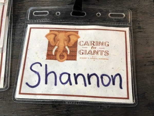 Caring for Giants badge