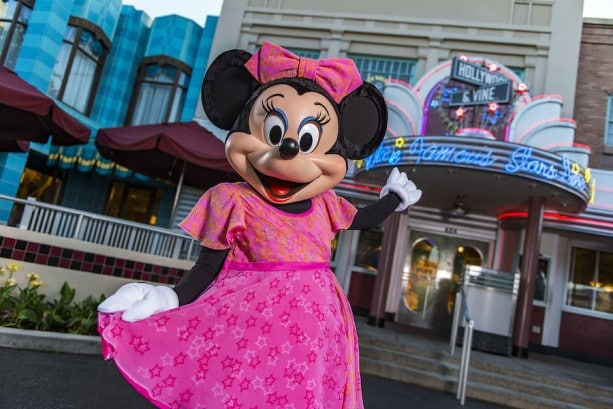 Pros and Cons for All Hollywood Studios Restaurants - Hollywood and Vine Fantasmic Dining package (lunch) – Temporarily Unavailable
