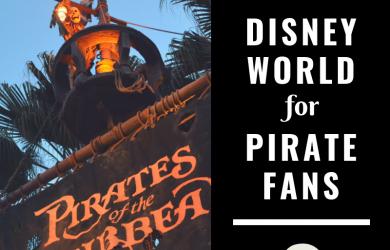 Pirates at Disney World 2 390x250 - Disney World for pirate fans