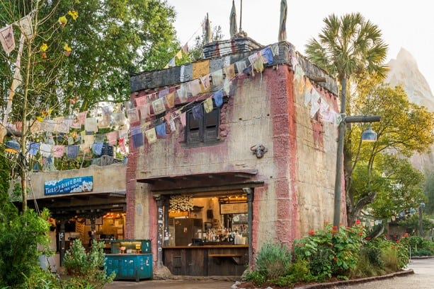 Animal Kingdom Dining - Thirsty River Bar and Trek Snacks (dinner)