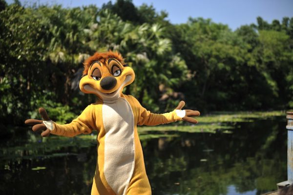 Timon 600x399 - A guide to all Animal Kingdom rides and attractions