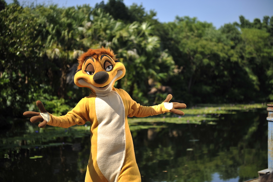 Timon (character meet)