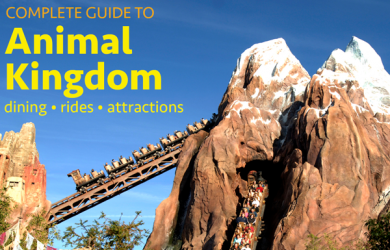animalkingdomguide 390x250 - Complete guide to Disney's Animal Kingdom