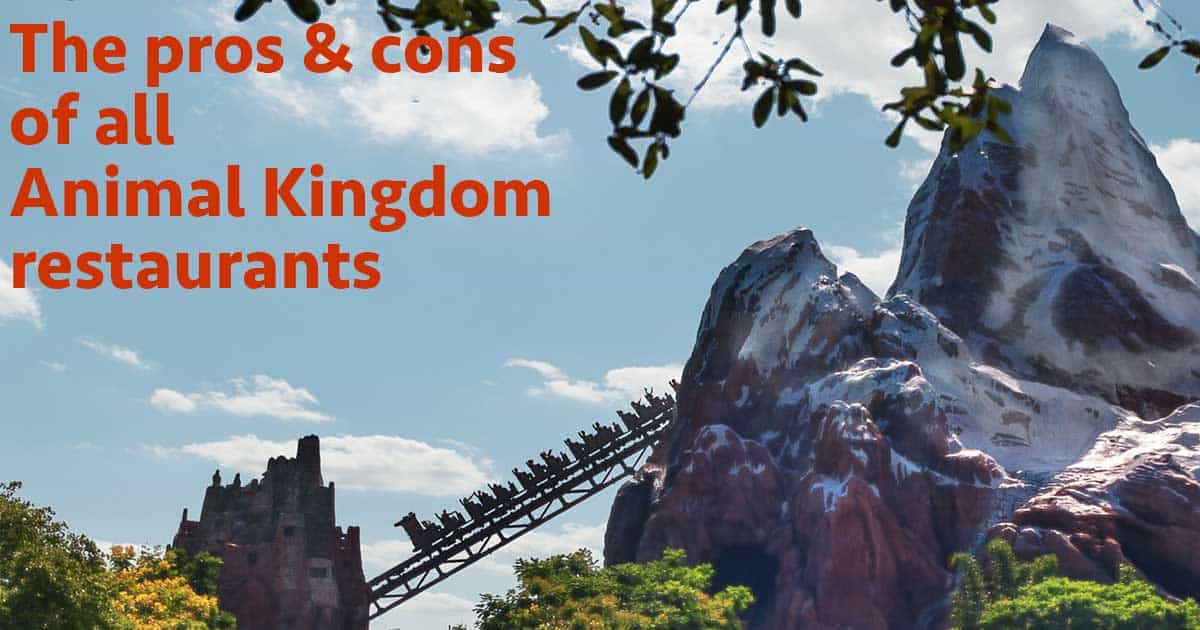 Pros And Cons For All Animal Kingdom Restaurants Wdw Prep