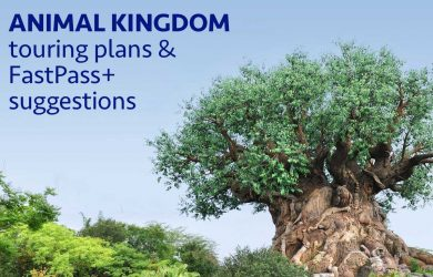 Animal Kingdom touring plans and FastPass suggestions