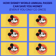 How using an Annual Pass can save you money