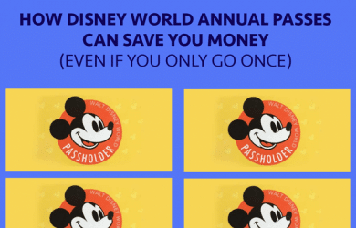 annualpassholder 1 390x250 - How Disney World Annual Passes can save money (even if you only go once)