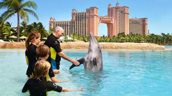 Atlantis Dolphin Cay Dip 'N Discover Aquaventure in Nassau